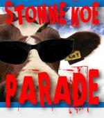 stomme-koe-parade-bril.jpg