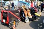 electrische_scooter_hoendenaanhang.jpg